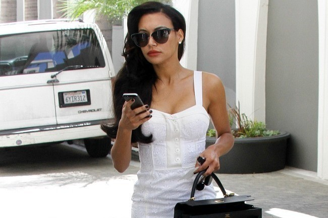 Naya Rivera's Retro Style Dress