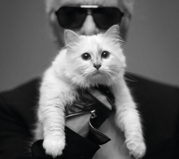 Happy Birthday Choupette + More Fun Facts About Karl Lagerfeld's Kitty