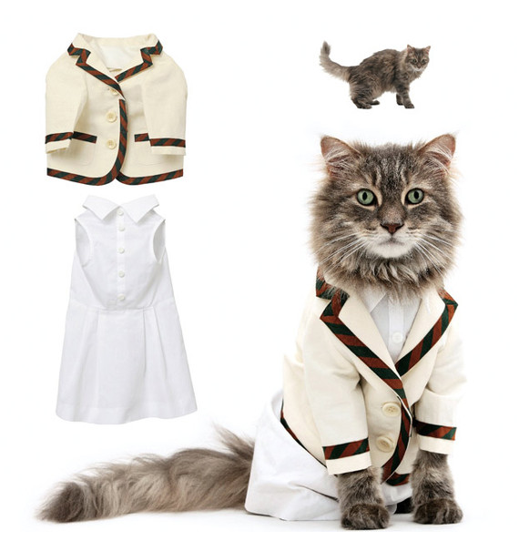 BEST THING EVER: You Can Actually Buy United Bamboo's Cat Clothes