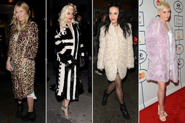 500+ Celebrity Fur Coat Looks for Outerwear Inspiration