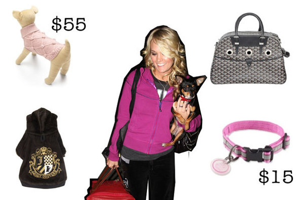 Shop Holiday Gifts for the Pampered Pup