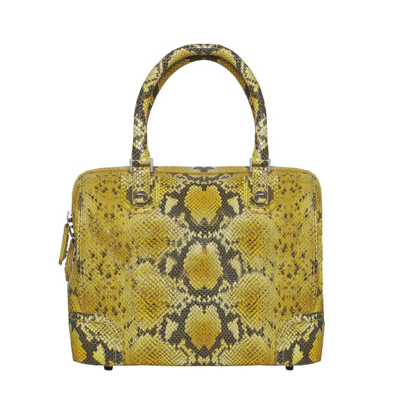 Olivia Bag in Snakeskin