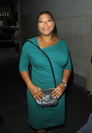 Queen Latifah's Goyard evening bag was a classic little clutch for a night out.