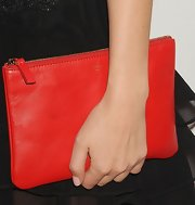 Rose Byrne's Celine zip pouch provided the perfect pop of color to her stylish separates.