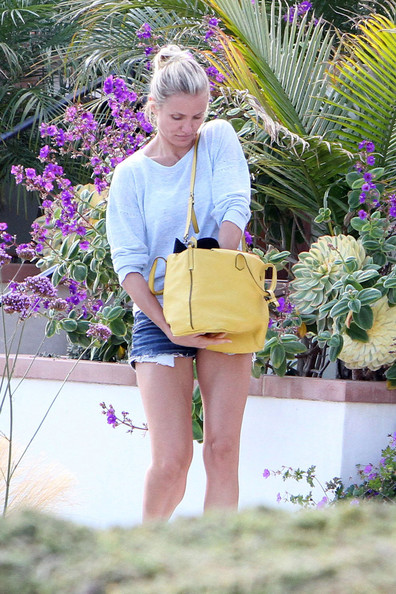 More Pics of Cameron Diaz Leather Tote (5 of 10) - Cameron Diaz Lookbook - StyleBistro