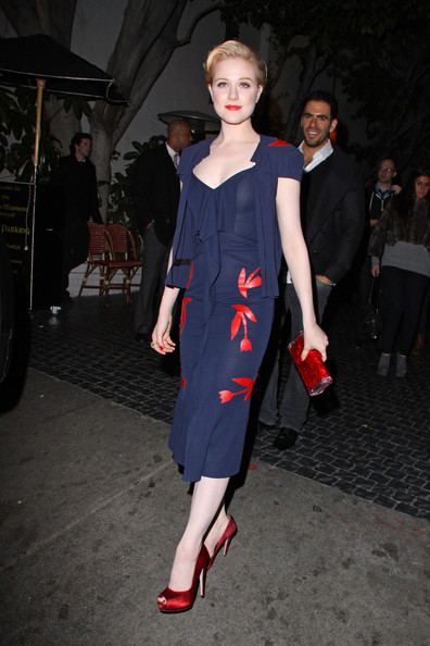 Evan Rachel Wood Print Dress