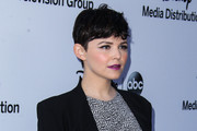Ginnifer Goodwin Picture
