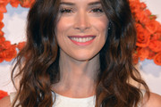 Abigail Spencer Long Wavy Cut