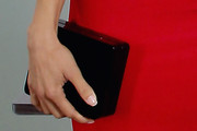 Angela Sarafyan Clutches
