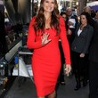 Brooke Shields Clothes - Cocktail Dress