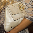 Gretchen Rossi Envelope Clutch