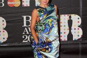 Katherine Jenkins Print Dress
