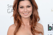 Shania Twain Long Wavy Cut