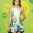Willa Holland Print Dress