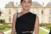 Marion Cotillard Fitted Blouse