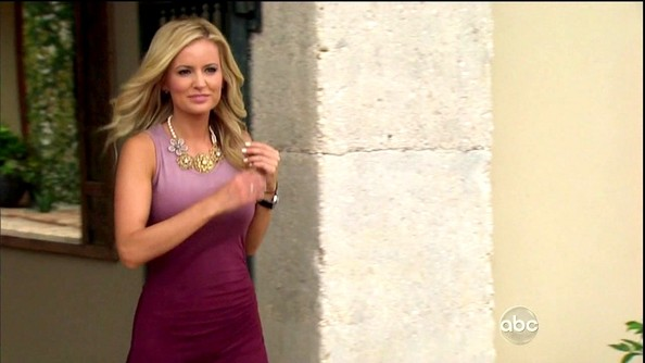 Emily Maynard Day Dress